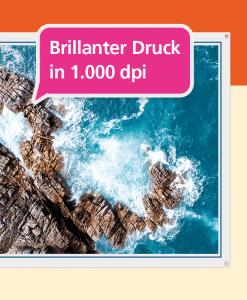 Backlit Banner - Druckqualität | BANNERKÖNIG