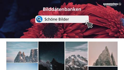Gratisbilder Finden Und Rechtssicher Verwenden Bannerkönig Wissenswert