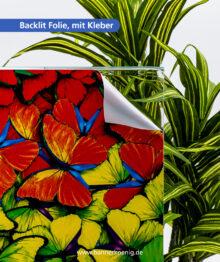 Backlit Folie, mit Kleber – Materialansicht 2