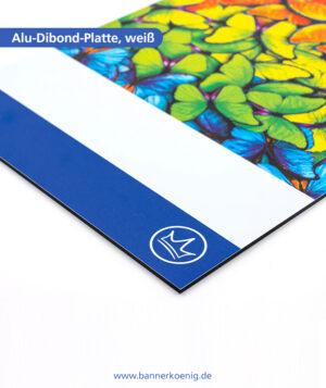 Alu-Dibond-Platte, weiß – Materialansicht 2